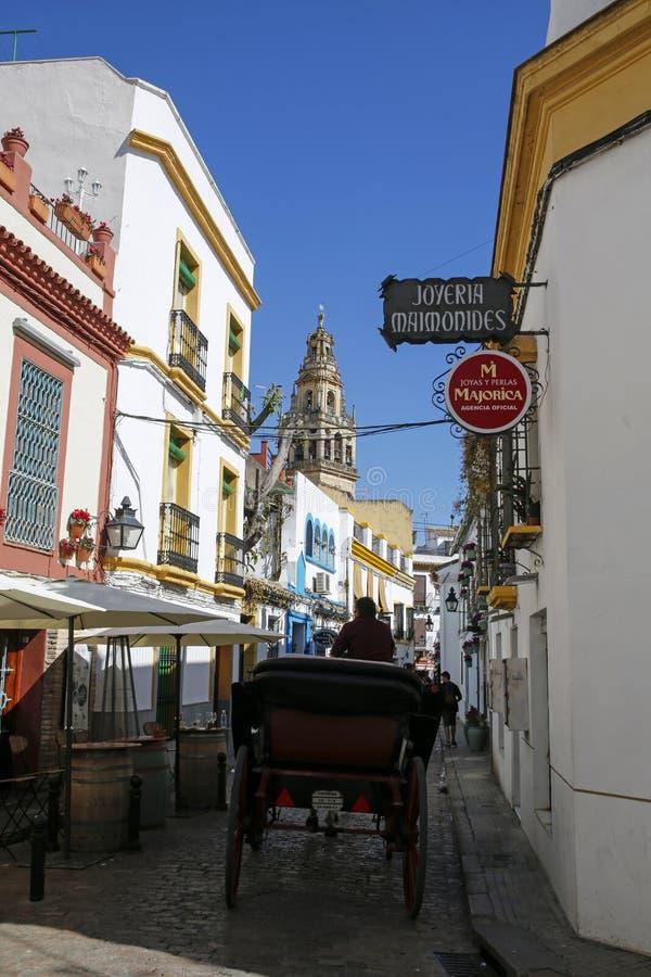 Hästvagn på en av charma, smal gata i Cordoba, Andalusia, Spanien arkivbild