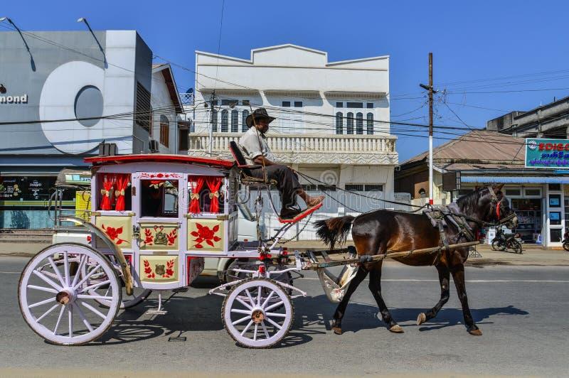 Hästvagnar i Pyin Oo Lwin, Myanmar royaltyfria foton