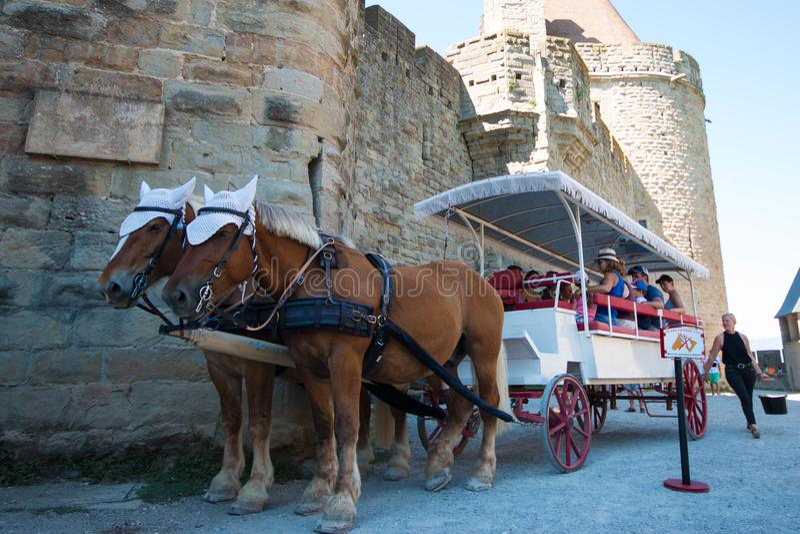Hästvagnen turnerar i Carcassonne, Frankrike royaltyfri bild