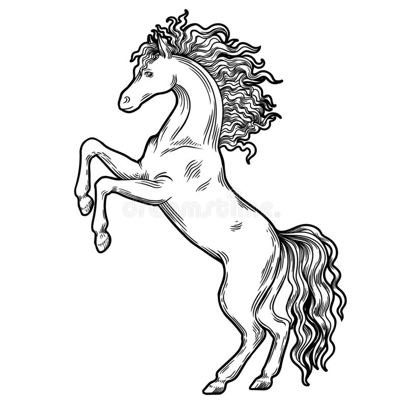 Hästvapensköld, heraldiskt objekt Hästheraldikvapensköld royaltyfri illustrationer