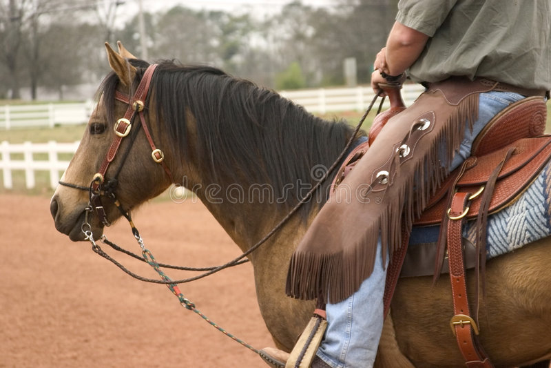 hästworking royaltyfri fotografi