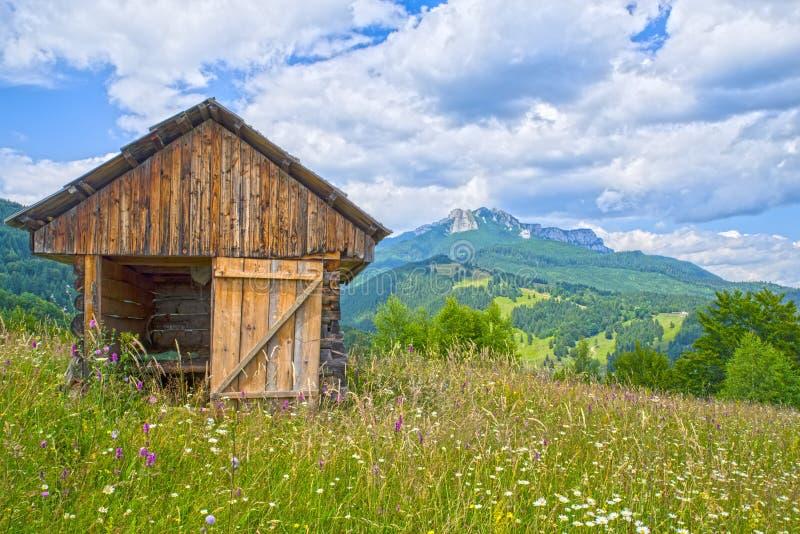 Häuschen auf Sommerweide stockfotografie