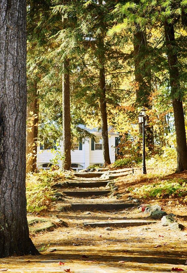 Häuschen an den Muskoka Seen, Kanada lizenzfreies stockbild
