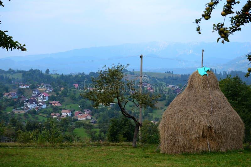 Häuser auf dem Hügel lizenzfreies stockfoto