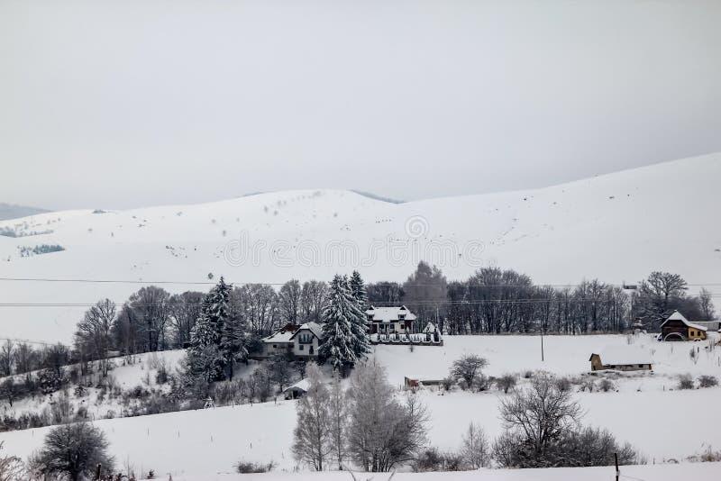 Häuser auf dem Hügel bedeckt mit Schnee und durch Wald umgeben lizenzfreie stockbilder