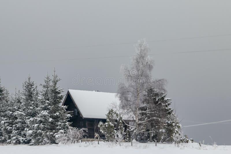Häuser auf dem Hügel bedeckt mit Schnee und durch Wald umgeben lizenzfreie stockfotos