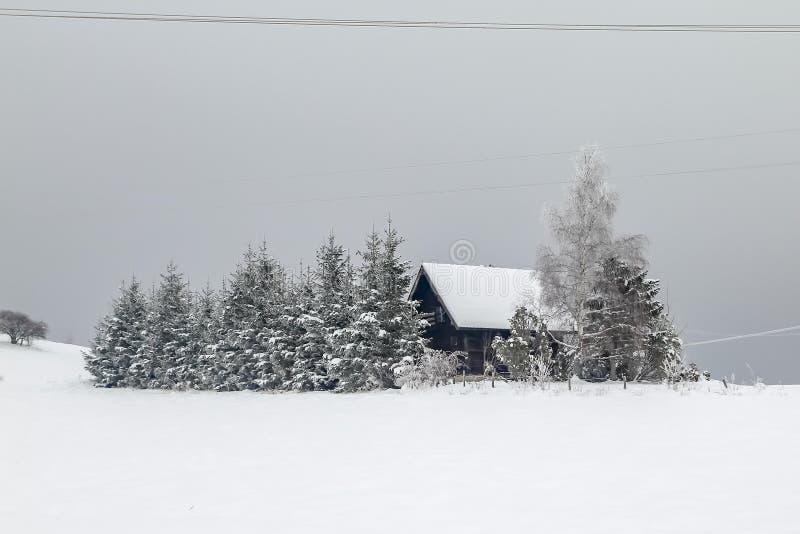 Häuser auf dem Hügel bedeckt mit Schnee und durch Wald umgeben stockfotos