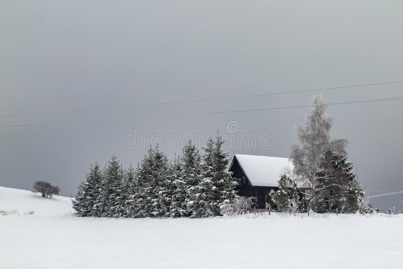 Häuser auf dem Hügel bedeckt mit Schnee und durch Wald umgeben stockbilder