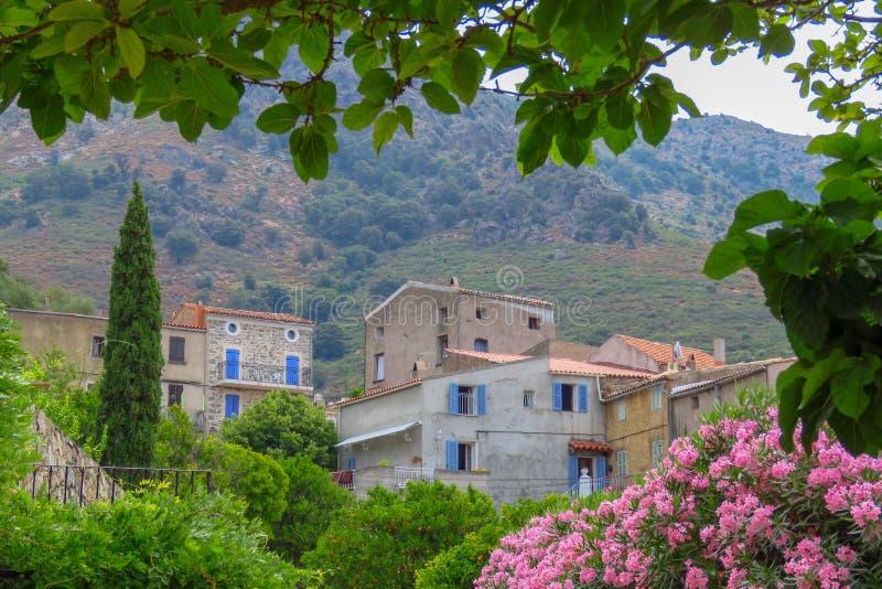 Häuser in einem Fernbergdorf in der Balagne-Region, Korsika, Frankreich lizenzfreies stockfoto
