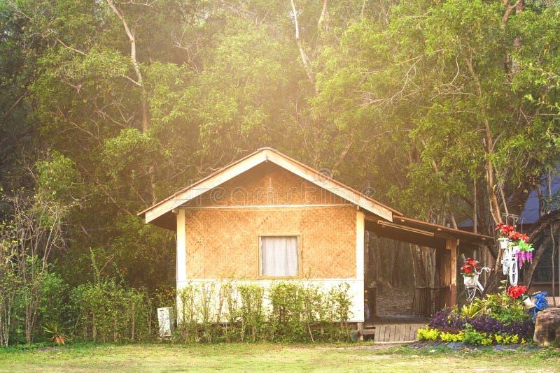 Häuser im Wald lizenzfreies stockbild