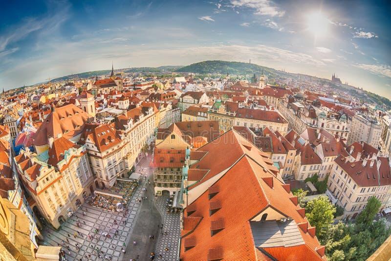 Häuser mit traditionellen roten Dächern in alter Stadt Prags in der Tschechischen Republik Fisch-Auge Objektiv stockfotografie