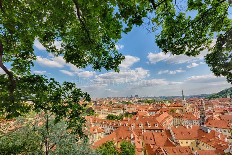 Häuser mit traditionellen roten Dächern und Bäume in Bezirk Prags Mala Strana in der Tschechischen Republik Bäume und Grünblätter stockbilder