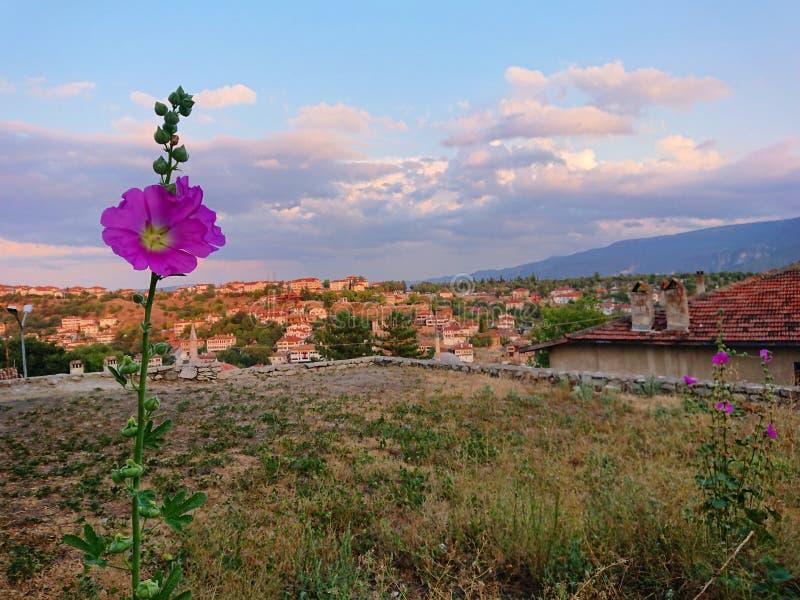 Häuser von Safranbolu stockbild