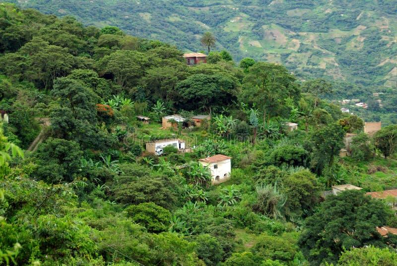 Häuser in Yungas, Bolivien lizenzfreie stockfotografie