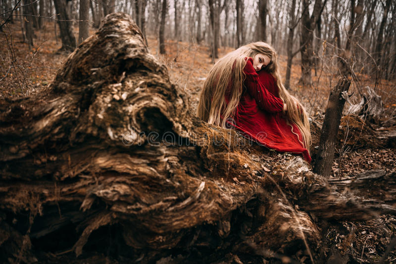 Häxa i skog royaltyfri bild