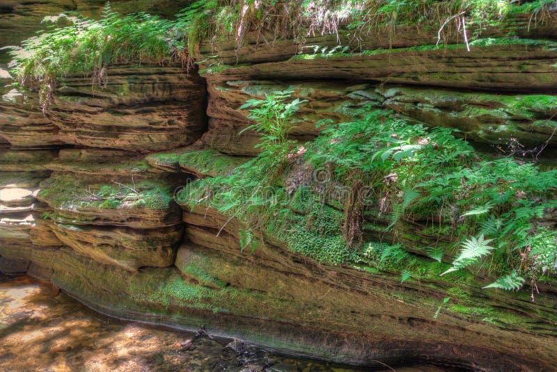 Häxabergsklyftan är en gömd dragning i Wisconsin Dells och kan arkivbilder