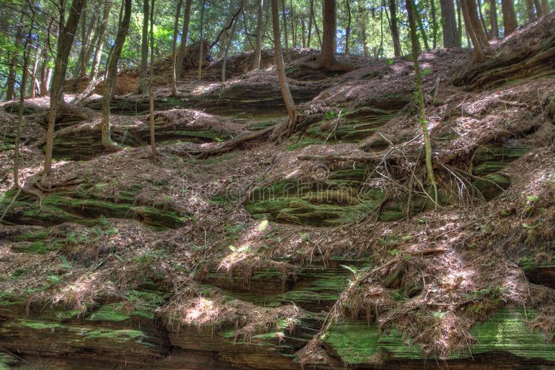Häxabergsklyftan är en gömd dragning i Wisconsin Dells och kan royaltyfri fotografi