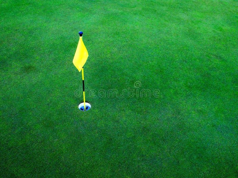 hål för golfgräsgreen royaltyfri foto