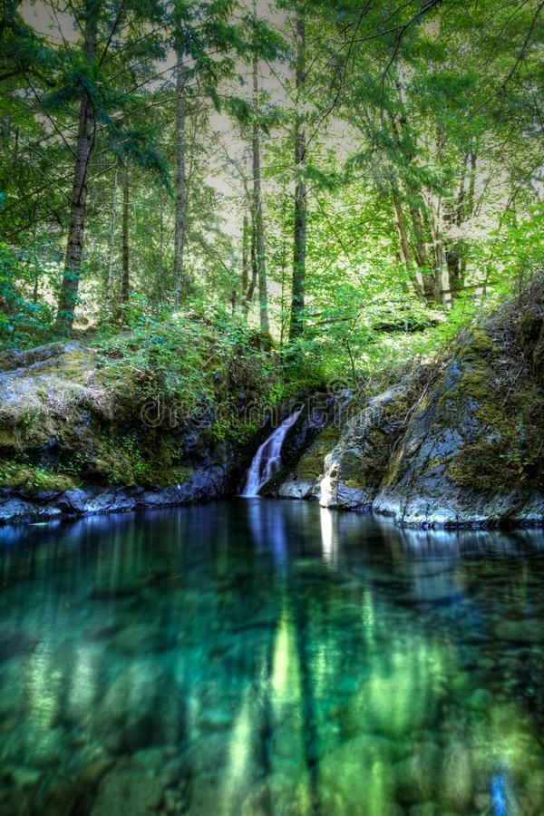 Hål för Paradise liten viksimning med en kort vattenfall på den lägre Rogue River arkivfoto