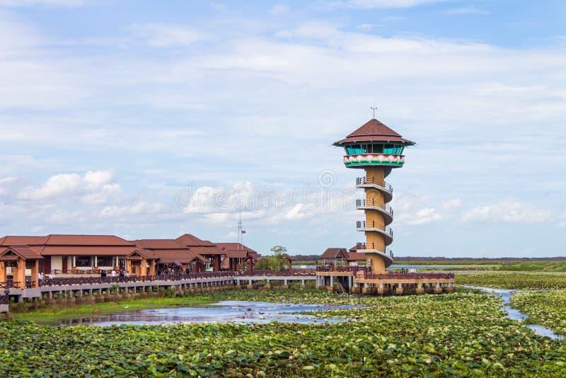 Håll ögonen på tornet på den Thale Noi nationalparken, det Phatthalung landskapet, Thailand arkivbilder