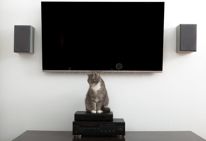 hålla ögonen på för tv arkivbild