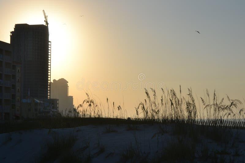 Soluppgång på stranden arkivfoto