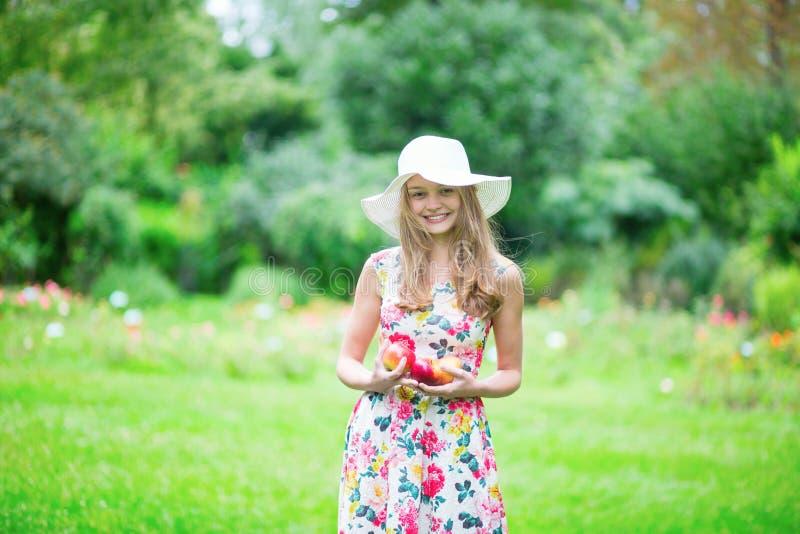Hållande äpplen för härlig ung flicka fotografering för bildbyråer