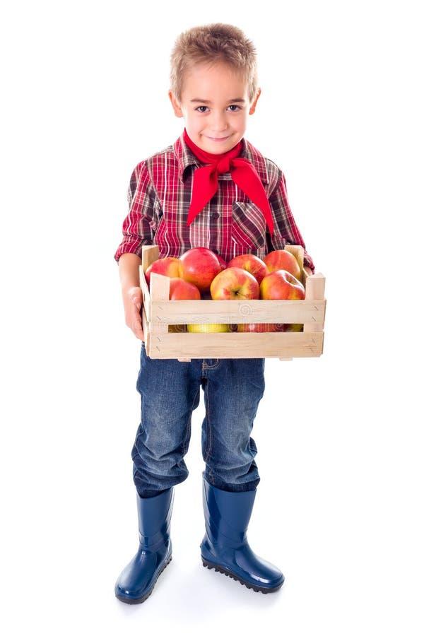 Hållande äpplen för liten bondepojke royaltyfri foto
