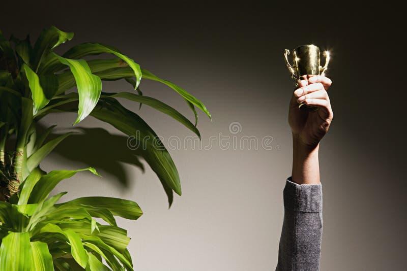 Hållande övre trofé för affärskvinna royaltyfri foto