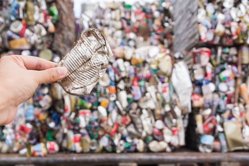 Hållande aluminiumburk för hand royaltyfria bilder