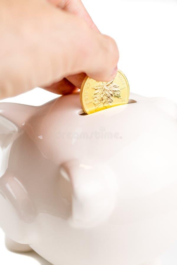 Hållande besparingar i guld fotografering för bildbyråer