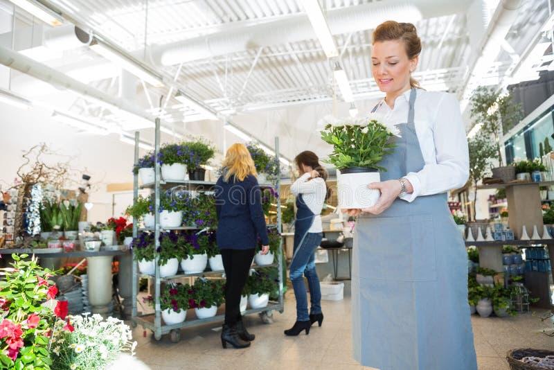 Hållande blomkruka för försäljare i blomsterhandlaren Shop royaltyfri bild
