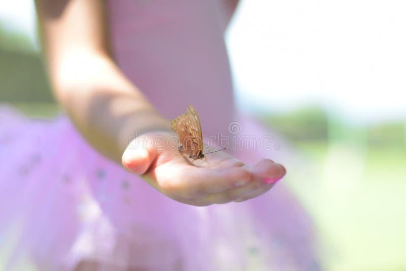 Hållande fjäril för flicka royaltyfri fotografi
