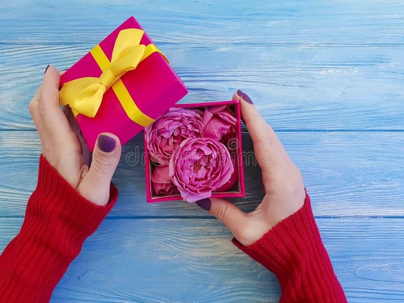 Hållande gåvaask för kvinnlig hand med romantisk födelsedaglyckönskan för pilbåge, rosblomma på blå träbakgrund royaltyfri bild