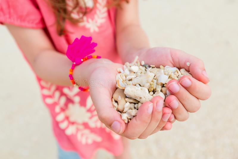 Hållande havsskal för flicka fotografering för bildbyråer