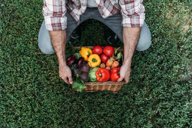 Hållande korg för bonde med grönsaker royaltyfri foto