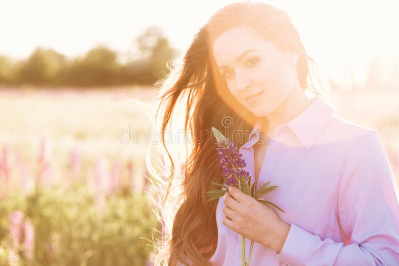 Hållande lupineblomma för lycklig ung flicka i händer Lång hårkvinnastående i fält på solnedgångljus royaltyfria bilder