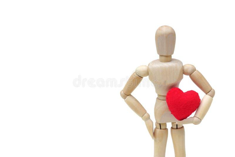 Hållande röd hjärta arkivfoto
