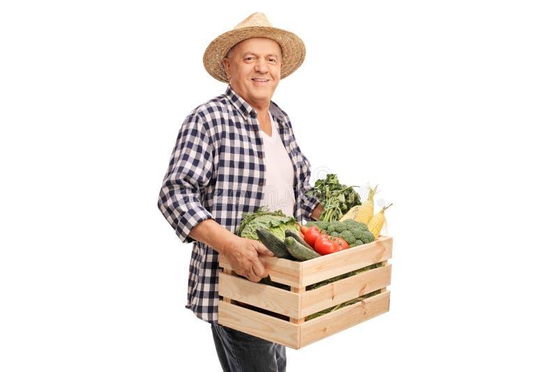 Hållande spjällåda för mogen bonde som är full av grönsaker royaltyfria bilder