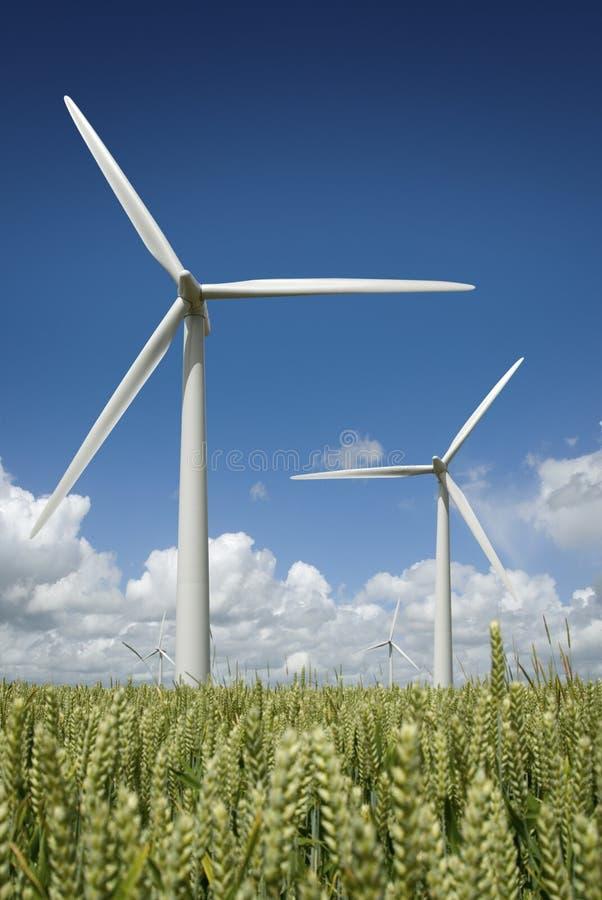 hållbar energi royaltyfria foton
