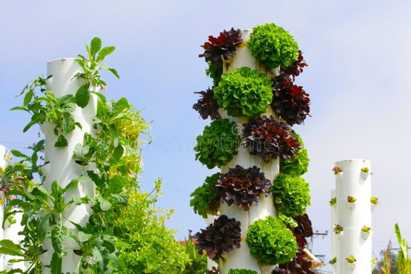 Hållbar uppehälle för trädgårds- torn fotografering för bildbyråer