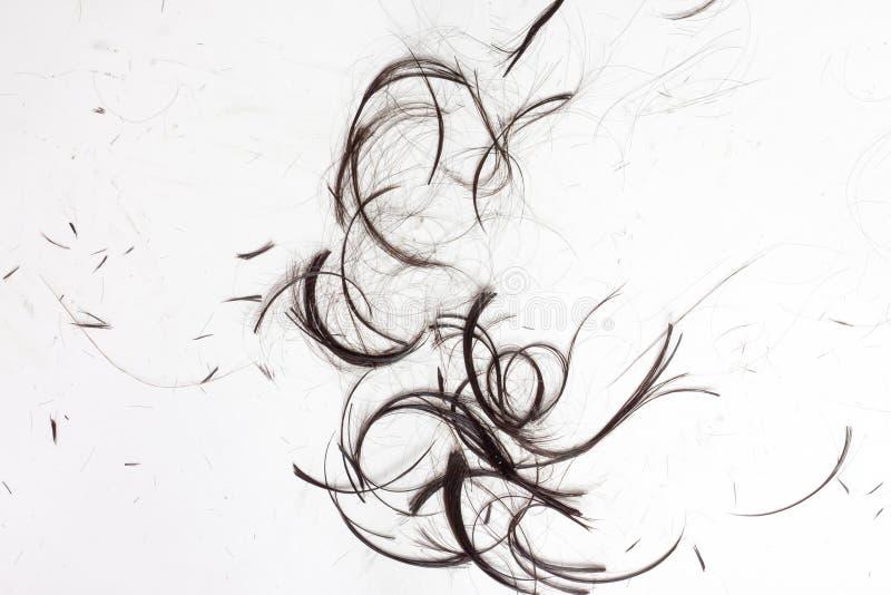 Hår klippte på golvet i barberaren shoppar av royaltyfria bilder