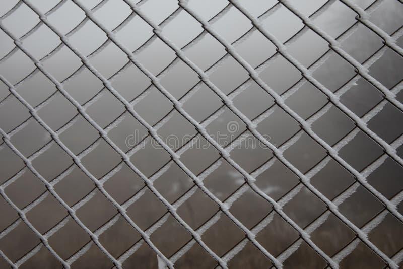 Hård rimfrost på staketet för trådingrepp solljus för oak för skog för design för kant för ekollonhöstbakgrund royaltyfria bilder