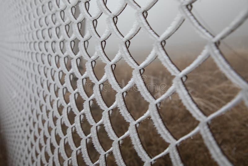Hård rimfrost på staketet för trådingrepp solljus för oak för skog för design för kant för ekollonhöstbakgrund royaltyfri fotografi