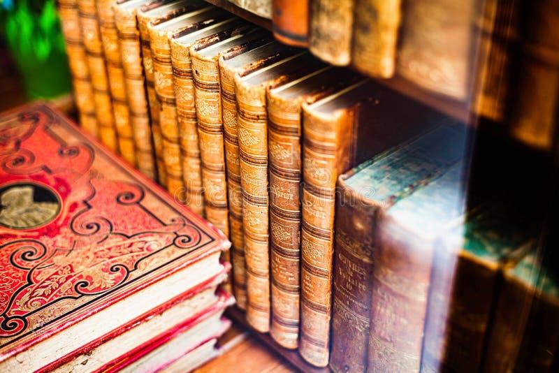 Hårdklädda böcker i arkitektoniska propp på trähyllor Läsning och insamling av antika butiker fotografering för bildbyråer