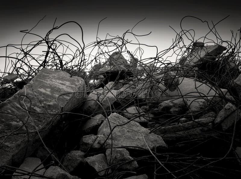 Hårdna djungeln fotografering för bildbyråer