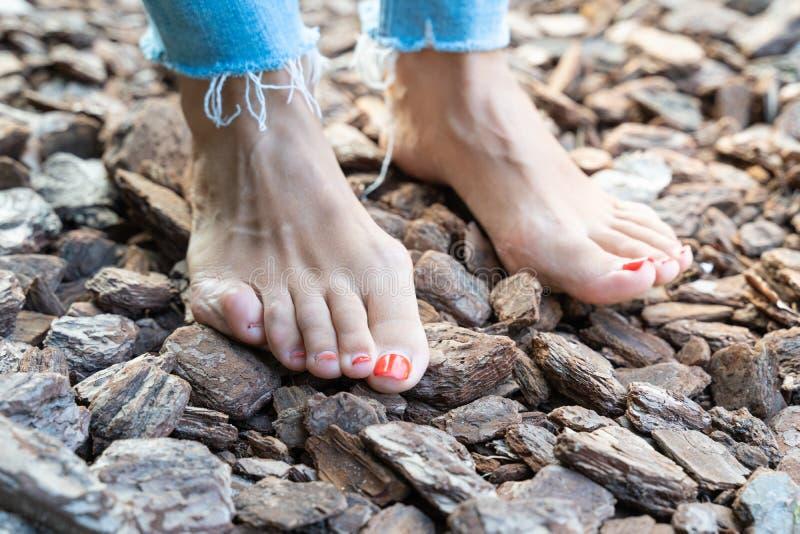 Hårdna fot barfota som går till olika yttersidor och temperaturer enligt Sebastian Kneipp filosofi fotografering för bildbyråer