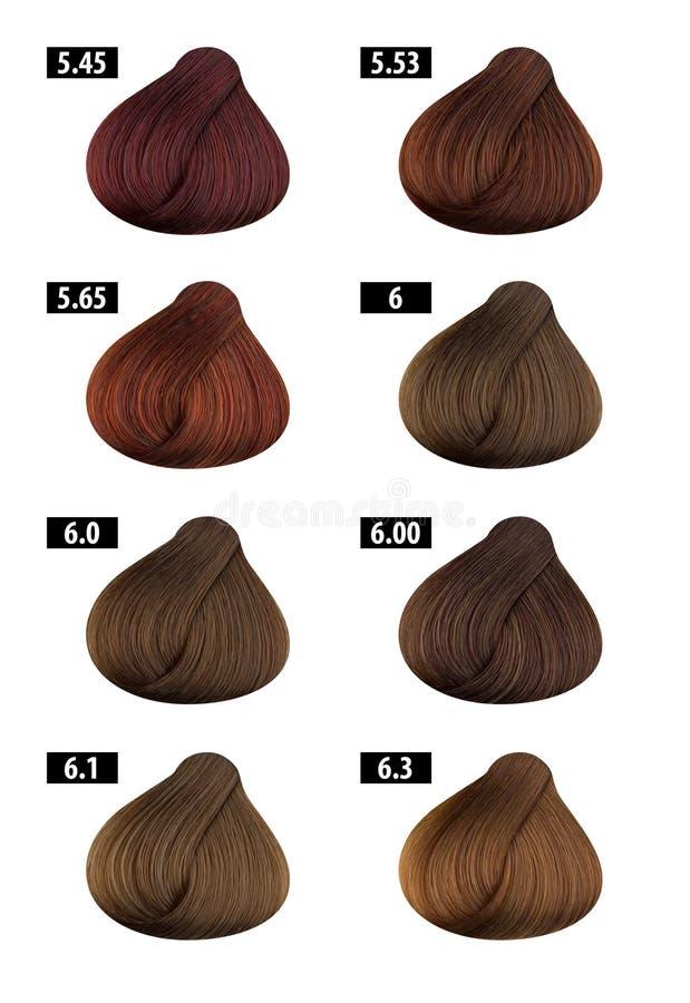 Hårfärg, färgdiagram, färgnummer 4 royaltyfri fotografi