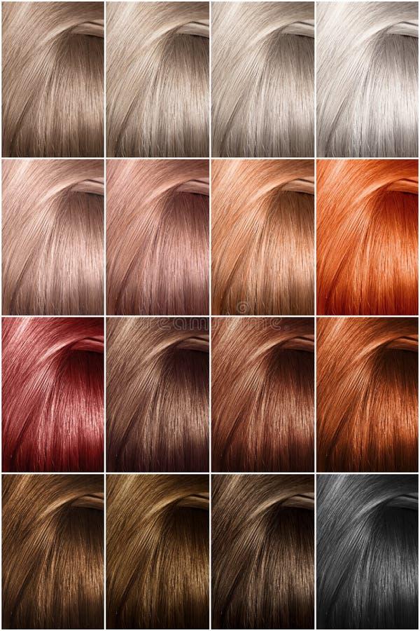 Hårfärgpalett med en lång räcka av prövkopior Prövkopior av färgade hårfärger royaltyfri fotografi