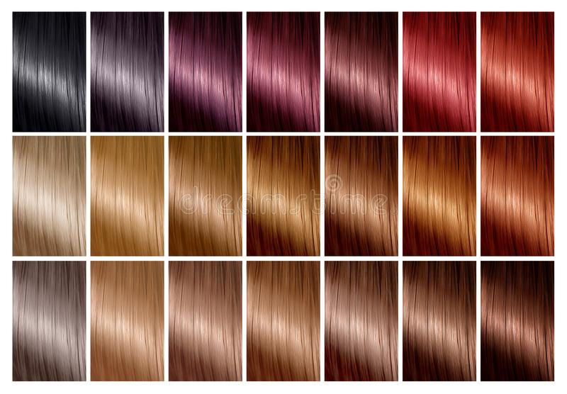 Hårfärgpalett med ett område av provkartor toner Färgdiagram stock illustrationer